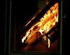 boto_foc